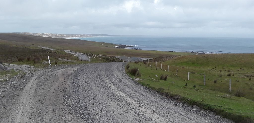 Typical Chathams landscape